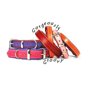 Padded Leather Dog Collar - shop by recipient