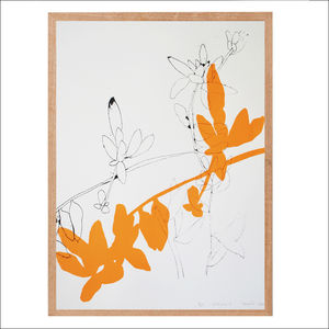 Screen Print, Botanical Art Print Series One