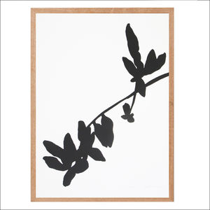Screen Print, Botanical Art Print Series Two
