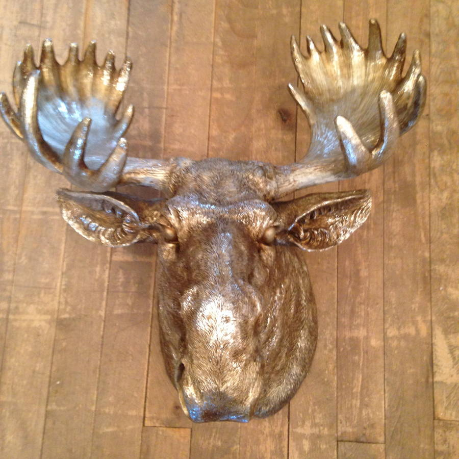 Moose Head Wall Mounted Out Of Stock By French Grey