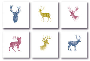 Set Of Six Note Cards; Deer
