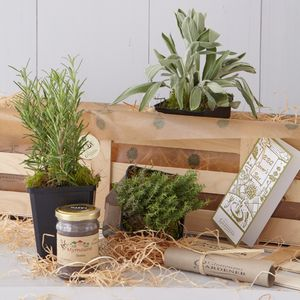 BBQ Lover's Herb And Spice Gift Box