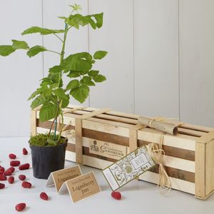 Grow Your Own Loganberry Jam Gift Set - gardening