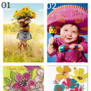 Bo Chococard Graduation Greeting Card Selection