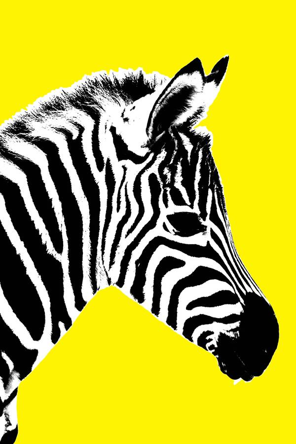 Glowing zebra canvas art