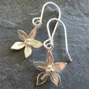 Silver Wildflower Drop Earrings