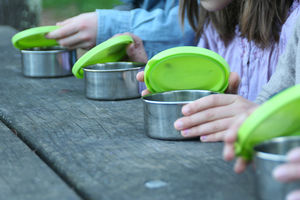 Reusable Stainless Steel Containers - picnics & barbecues