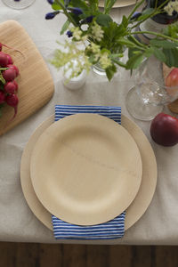 Biodegradable Party Plates Packs Of 25 - picnicware