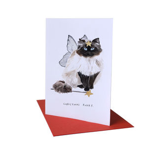 'Christmas Furry' Cat Christmas Card - christmas cards: packs