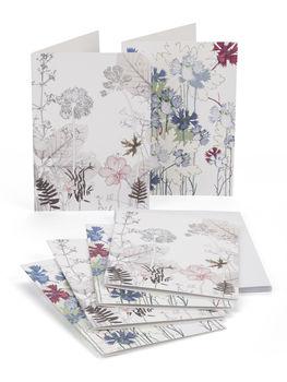 Cornflower/Hedge Notelets