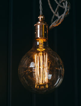 Super Globe Squirrel Cage Bulb