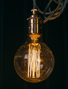 Globe Squirrel Cage Bulb - ceiling lights