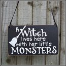 A Witch Lives Here Halloween Handmade Sign