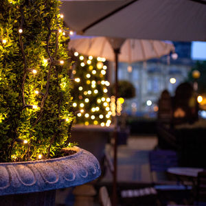 Outdoor Garden String Lights - christmas lighting