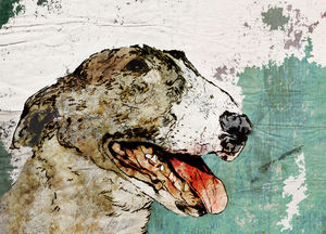Bull Terrier Limited Edition Signed Print - canvas prints & art