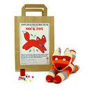 Sock Fox Craft Kit