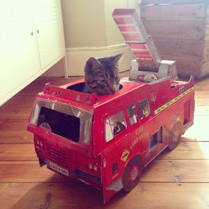Fire Engine Cat Playhouse - cats