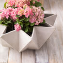 Kronen Bowl Flower Pot