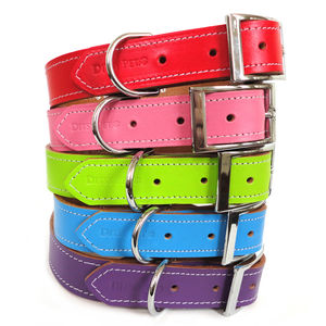 Leather Dog Collar - clothes & accessories