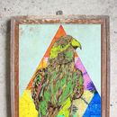 Triangle Parrot Limited Edition Signed Print