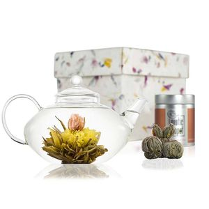 Prestige Flowering Tea Gift Set With Glass Teapot - tableware