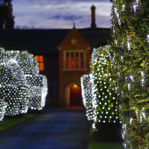 280 White Net Lights - christmas decorations