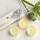 Honey Lily Scented Tea Lights