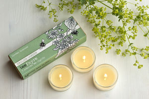 Lime Blossom Scented Tea Lights - votives & tea light holders