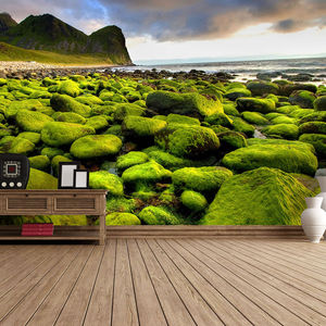 Mossy Shore Self Adhesive Wallpaper - office & study
