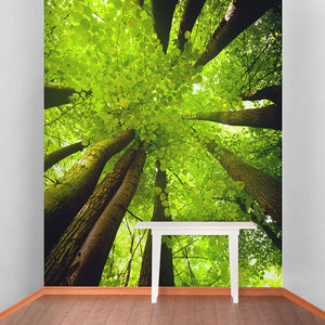Tall Trees Self Adhesive Wallpaper - bedroom