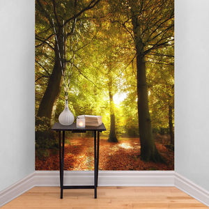 Autumn Tree Forest Self Adhesive Wallpaper - office & study
