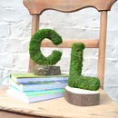 Real Moss Covered Couple's Initials Bookends