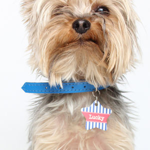 Personalised Pet Name ID Tag Star Stripe - pet tags & charms