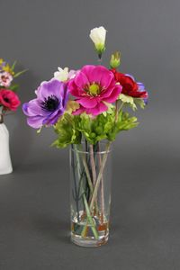 Posy Of Anemones And Carnations In Gel Water