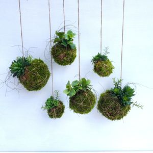 Artificial Kokedama - home accessories
