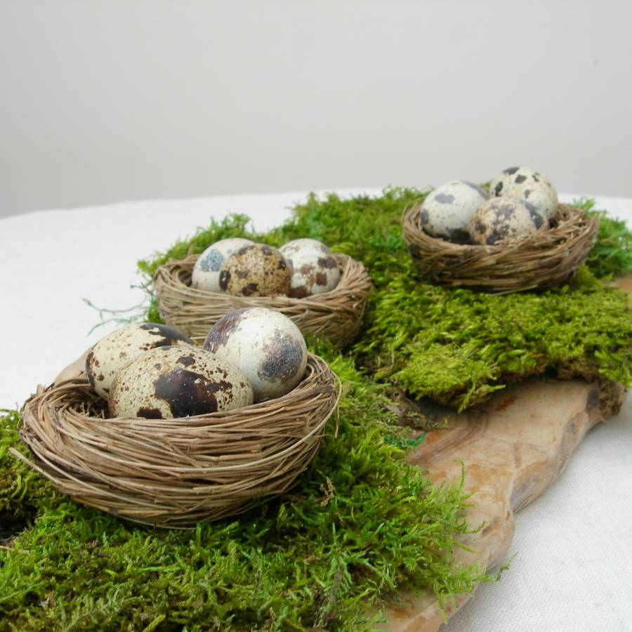 Natural decorative birds nests by just add a dress for Artificial birds for decoration
