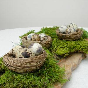 Natural Decorative Birds Nest - styling your day