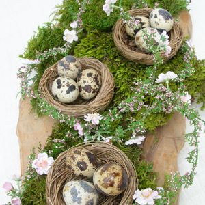 Set Of Three Natural Decorative Birds Nests - tableware