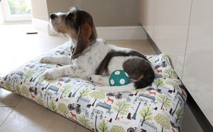 Designer Dog Beds - dogs