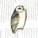 Hand Drawn And Hand Painted Snowy Owl Brooch
