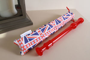 Recorder With Union Jack Case