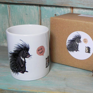 Porcupine And Hedgehog 'Nice Hair' Illustration Mug - mugs