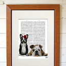 French And English Bulldogs Print