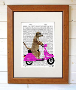 Meerkat On A Pink Moped Dictionary Print - contemporary art