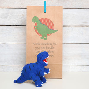 Dinosaur Rattle With Personalised Gift Bag - baby care