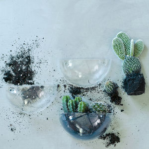 Lovel Mini Wall Terrarium - living room