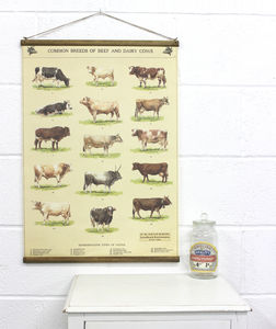 Cow Chart Wall Hanging - pictures & prints for children