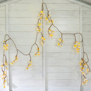Tropical Frangipani Flower Light Chain By Home Amp Glory