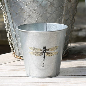 Small Dragonfly Plant Pot Cover