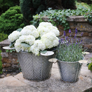 Zinc Planter With Candle Holders